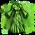 Elven Silkcloth Garments