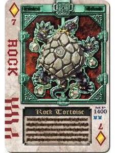 RockTotoise
