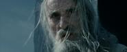 Saruman the White 15