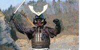 Warrior Mask