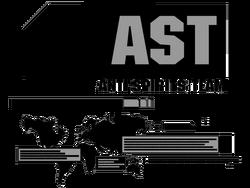 Anti Spirits Teams1 Logo