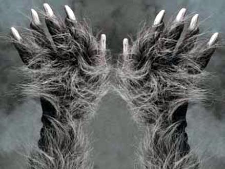 File:Hairy-knuckles.jpg