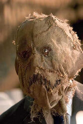 Scarecrow-batman-begins-11593756-300-449