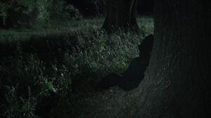 Scream S02E10 1080p 0453