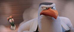 Storks-hunter-pigeon