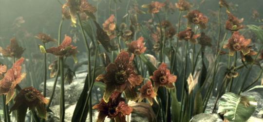 File:Stairway of the Sun Flowers.jpg