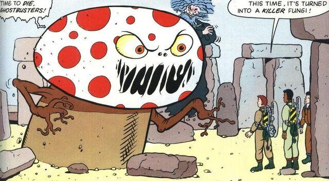 File:Gozo Fungi.jpg