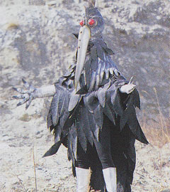 Kaiser Crow