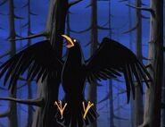 Raven as Bird