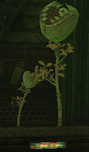 File:HH plants.png
