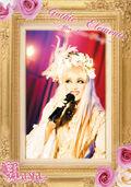 Kaya DVD6