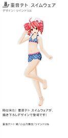 Kasane Teto Swimwear