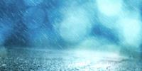 Rainy Trail