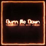 Burn Me Down album art