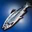 King Salmon - Icon (Big)