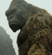 Kong (Legendary)