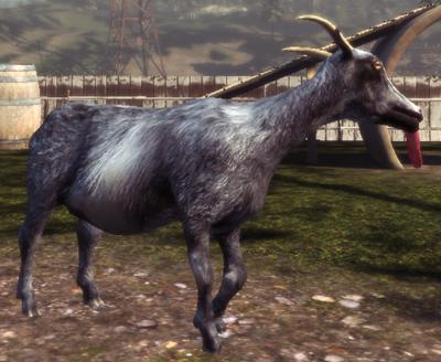 File:Pilgor Goat Simulator.png