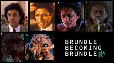 Brundle-becoming-brundlefly-the-fly-1986