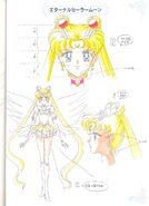 Eternal Sailor Moon Concept Art 1