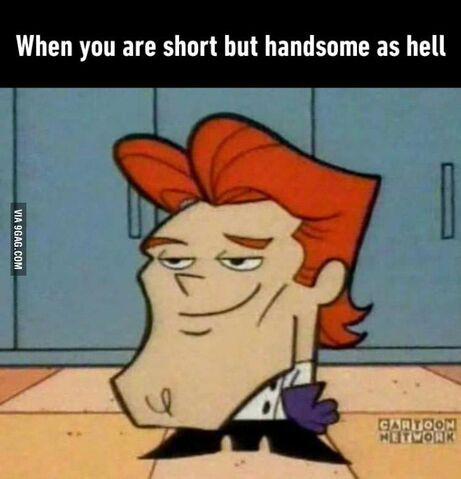 File:When you short but handsome.jpg