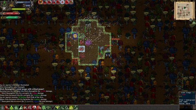 File:Tales of Maj Eyal screenshot.jpg