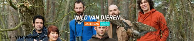 File:Carroussel Wild van Dieren.png