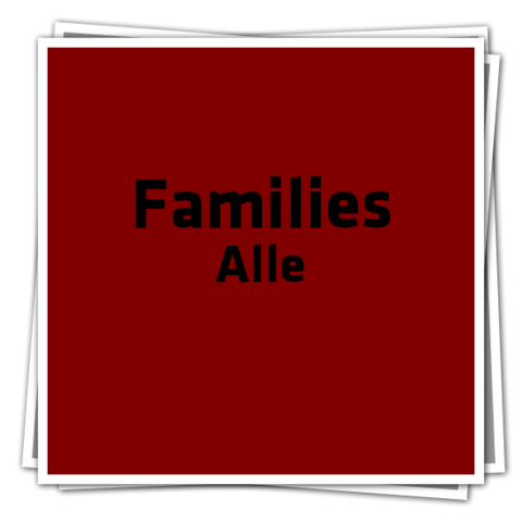 File:FamiliesAlleIcon.png
