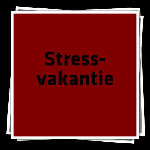 File:StressvakantieIcon.png