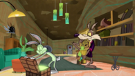 CoyoteRabbitSquirrel9