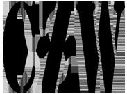 File:CZW-Logo-portal.png
