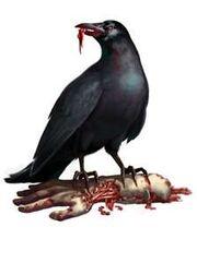 Thumbnail zombie crow