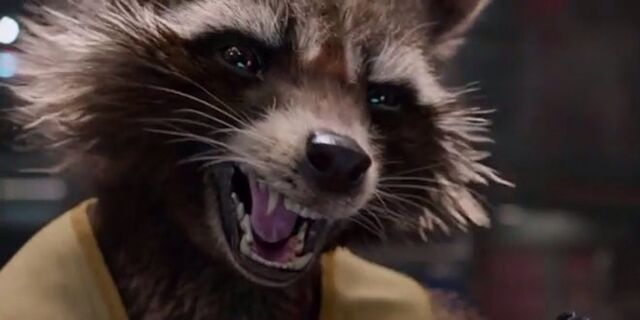 File:Rocketraccoon.jpg