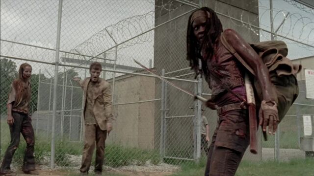 File:The Walking Dead S03E07 0353.jpg