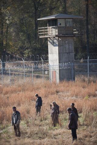 File:Walking-dead-walkers-season-3-finale-welcome-to-tombs-amc.jpg