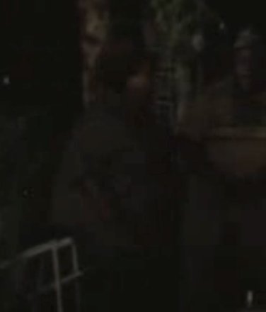 File:Mitch and wife camp attack (Vatos).png
