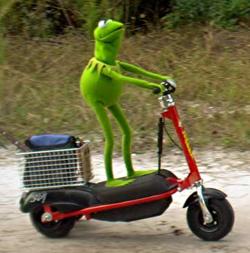 File:Kermit-scooter1.jpg