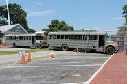 Woodbury Busses