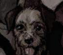 Walter (Animal)