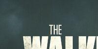 Season 4 (TV Series)