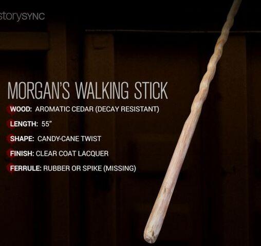 File:Morgan's Walking Stick.JPG