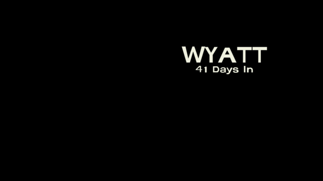 File:WS Title Card.png