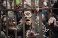 AMC 603 Walkers Fence