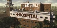 Savannah Hospital