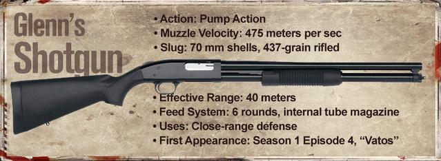 File:Glenn's Shotgun.png