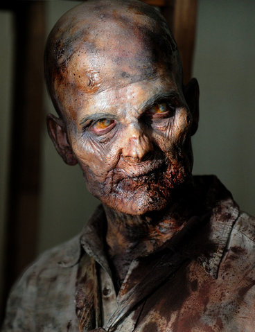 File:Pj McDonnell as Walker.png