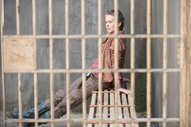 File:Carol cell.jpg