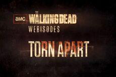 Webisode Torn Apart