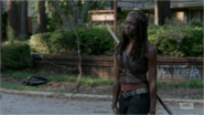 5x09 Michonne Broke Down