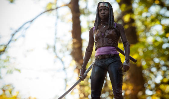 File:Michonne Series 3 Action Figure BG.jpg
