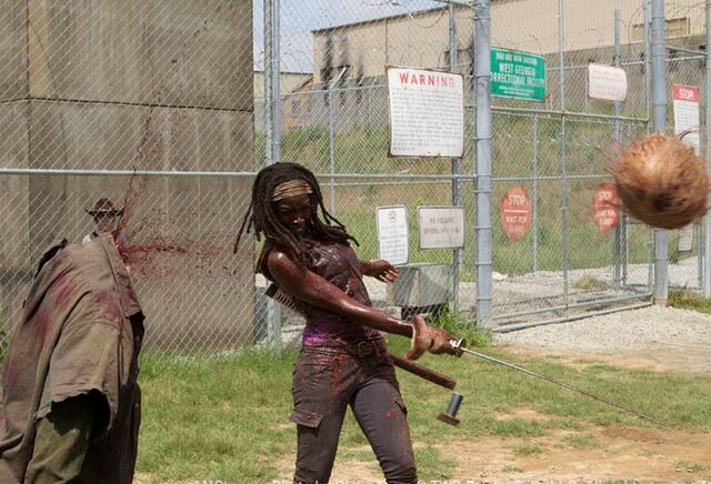 File:Michonne off with there heads.JPG